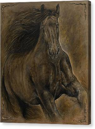 Wildheart....sang To Me Canvas Print by Paula Collewijn -  The Art of Horses