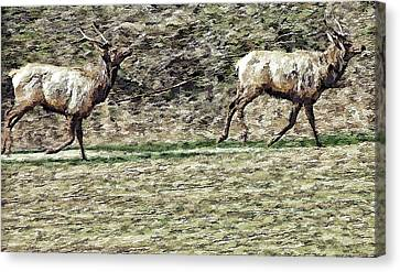 Wildlife Tapestry Canvas Print by Dennis Baswell