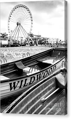 Wildwood Black Canvas Print by John Rizzuto