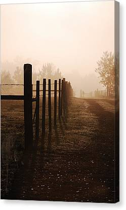 Will They Be Mist Canvas Print by Robert Meanor