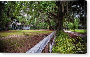 Will Town Bluff Plantation Home IIi Canvas Print by Yvette Wilson