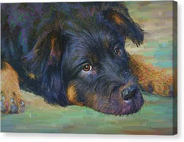 Will You Play With Me? Canvas Print by Angela A Stanton