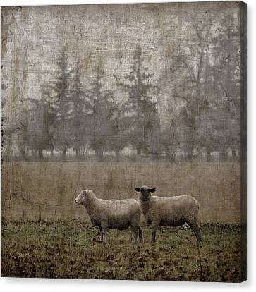 Willamette Valley Oregon Canvas Print by Carol Leigh