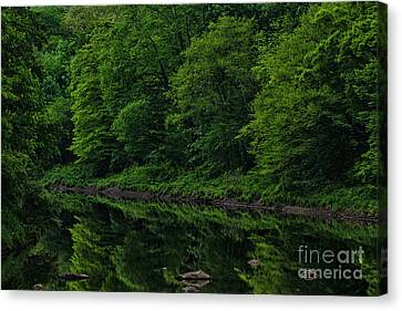 Trout Stream Landscape Canvas Print - Williams River Spring Reflections by Thomas R Fletcher