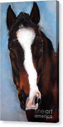 Willie Duke Canvas Print by Frances Marino