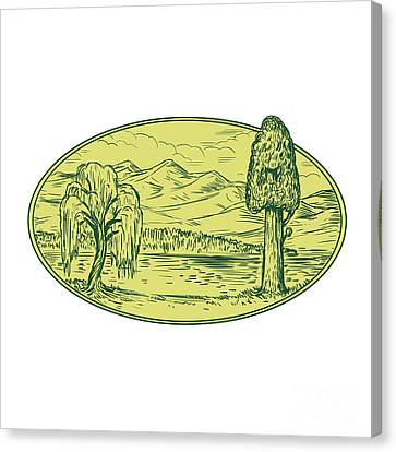 Willow And Sequoia Tree Lake Mountains Oval Drawing Canvas Print