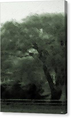 Willow Green Canvas Print by Debra     Vatalaro