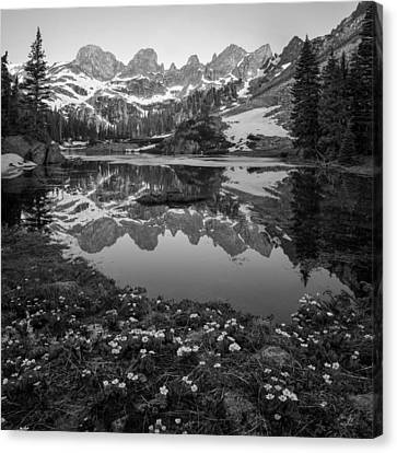 Willow Lake Black And White Canvas Print by Aaron Spong