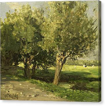 Willow Trees Canvas Print by Willem Roelofs