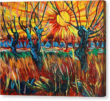 Willows At Sunset - Study Of Vincent Van Gogh Canvas Print by Karon Melillo DeVega