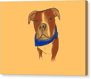 Willy The Pittie Canvas Print by Sarah Dampier