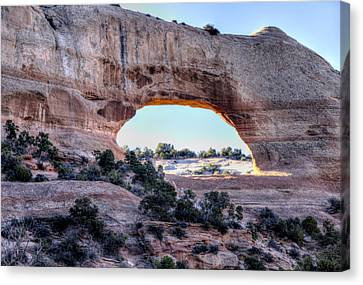 Wilson Arch In The Morning Canvas Print by Alan Toepfer