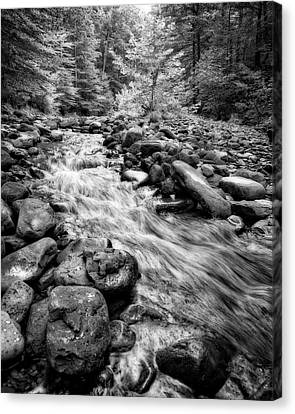 Canvas Print featuring the photograph Wilson Creek 2 by Alan Raasch