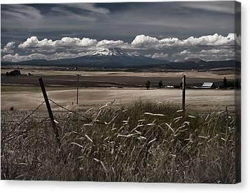 Wind Blown Plains Canvas Print