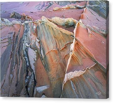 Wind Blown Sand Texture Canvas Print by Leland D Howard