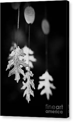 Wind Chime Canvas Print by Patrick M Lynch