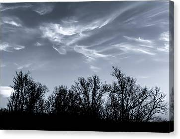 Wind Dancing On Trees Canvas Print
