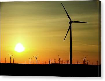Wind Farm Sunrise Canvas Print by Todd Klassy