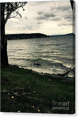 Wind Followed By Waves Canvas Print