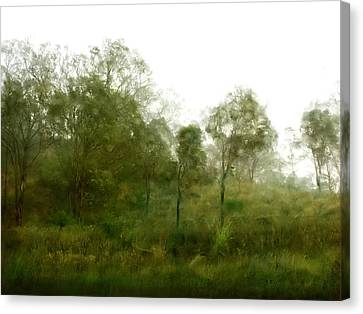 Wind Blown Tree Canvas Print - Wind Storm by Linde Townsend