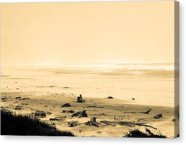 Canvas Print featuring the photograph Wind Storm On The Beach by Craig Perry-Ollila