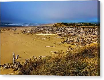 Wind Swept Beach Canvas Print by Garry Gay
