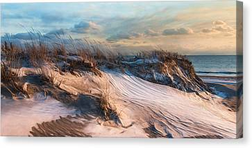 Canvas Print featuring the photograph Wind Swept by Robin-Lee Vieira