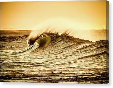 Wind Swept Wave Canvas Print
