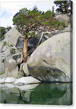 Wind, Water And Granite Canvas Print