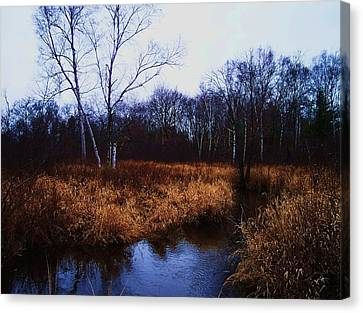 Winding Creek 2 Canvas Print by Anna Villarreal Garbis
