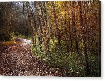Smokey Mountain Drive Canvas Print - Winding Path by Debra and Dave Vanderlaan