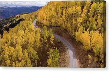 Winding Through Fall Canvas Print