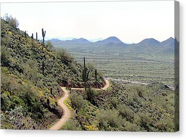 Winding Trail Canvas Print by Gordon Beck