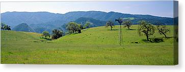 Windmill And Oak Trees In Spring Canvas Print