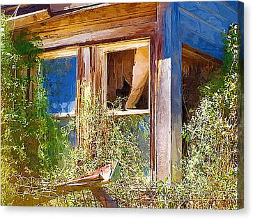 Canvas Print featuring the photograph Window 2 by Susan Kinney