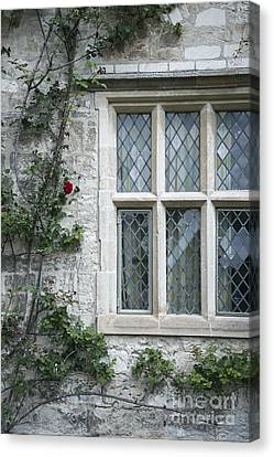 Window And Rose Canvas Print