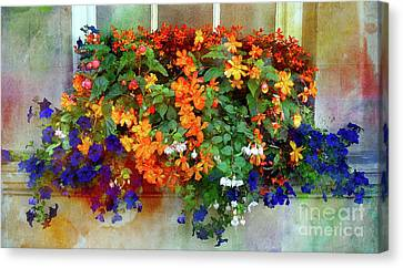 Window Box In Bath 2 Canvas Print by Judi Bagwell