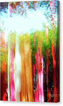Canvas Print - Window Dressing by Ross Odom