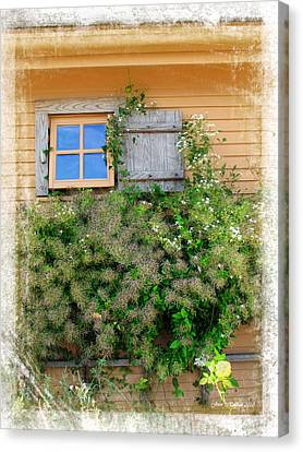 Canvas Print featuring the photograph Window Floral In Plymouth by Joan  Minchak