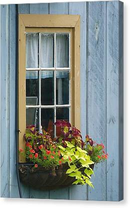Window Flower Basket Canvas Print