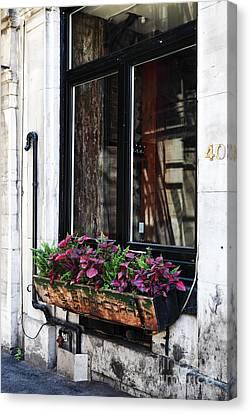 Window Flowers Canvas Print by John Rizzuto