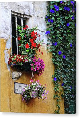 Window Garden In Arles France Canvas Print by Dave Mills