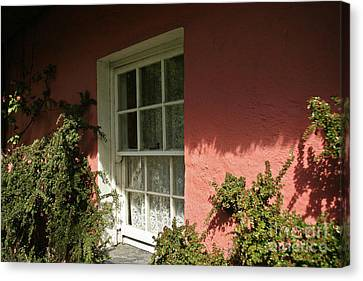 Window In Ireland Canvas Print by Christine Amstutz