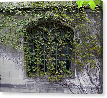 Window Scene University Of Chicago 2009 Canvas Print