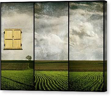 Window To Farmland Triptych Canvas Print by Wim Lanclus