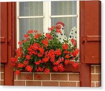 Window Watcher Canvas Print by Connie Handscomb