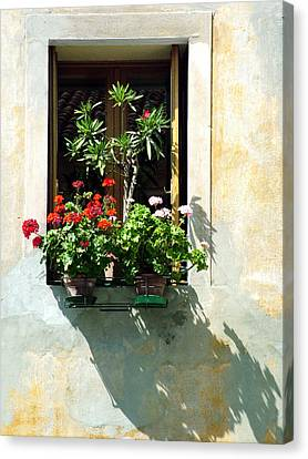 Canvas Print featuring the photograph Window With A Tree by Donna Corless