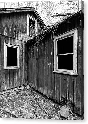 Canvas Print featuring the photograph Windows 3 by Alan Raasch