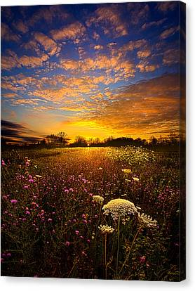 Winter Light Canvas Print - Windsong by Phil Koch