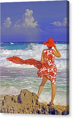 Windswept Canvas Print by Dennis Cox WorldViews